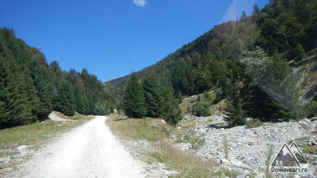 Valea Oltețului (și urme de viituri)