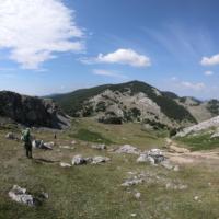Vârful Pietrele Albe, în depărtare
