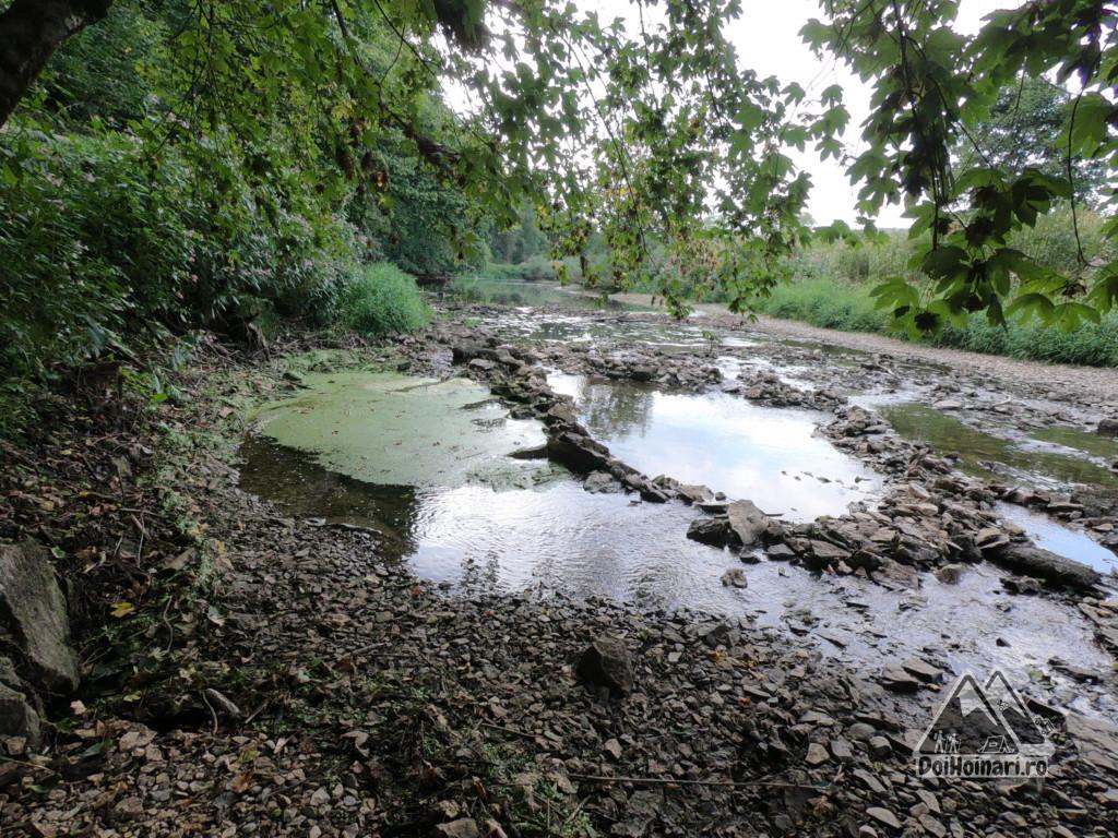 Sifonul - Donauversickerung