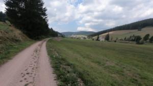 Forestierul spre Furtwagen