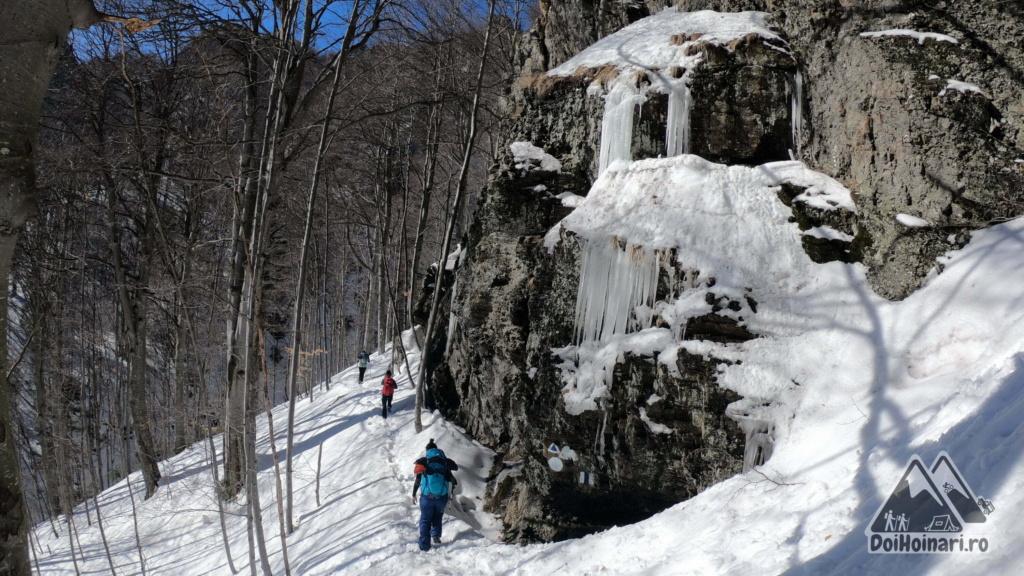 Cascada de gheață
