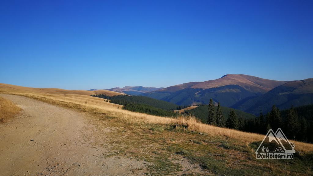 Vedere spre munții Căpățânii, din drumul Strategic